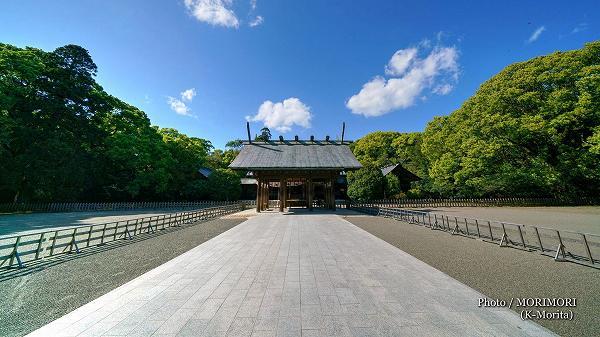 新緑の宮崎神宮 1
