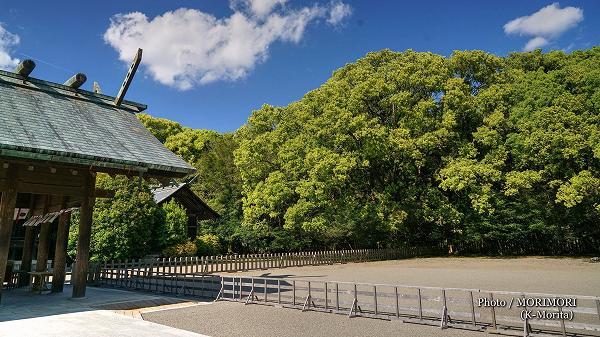 新緑の宮崎神宮 3