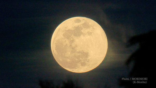 月(フラワームーン)