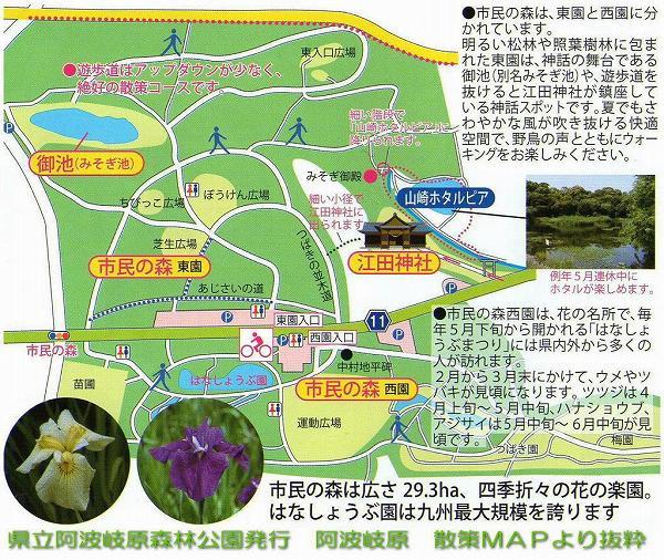 県立阿波岐原森林公園 市民の森 マップ