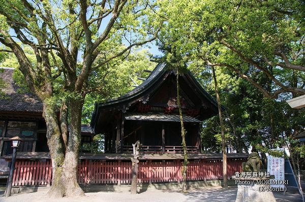 青井阿蘇神社 本殿
