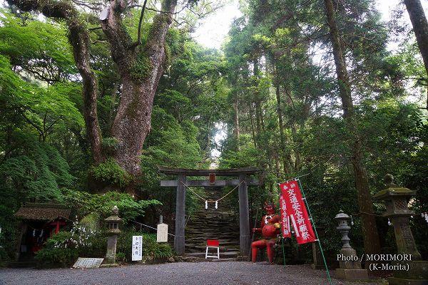 東霧島神社「鬼石階段」