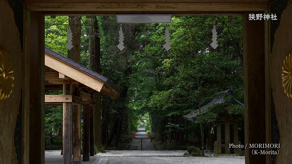 狭野神社 参道(神門より)