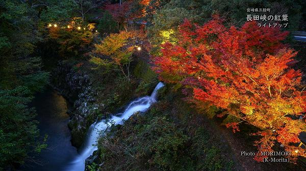 長田峡の紅葉ライトアップ 2