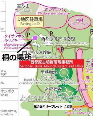 桐の場所 マップ