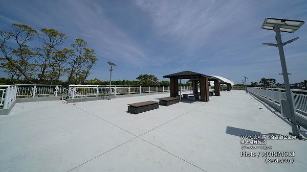宮崎県総合運動公園 津波避難施設(テニスコート近く)