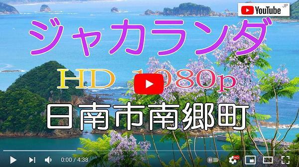 動画 ジャカランダ 日南市南郷町 道の駅なんごう付近