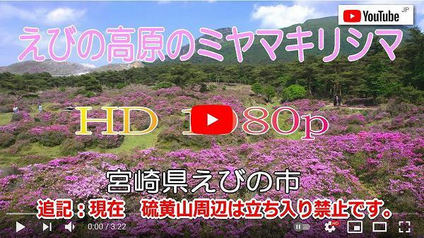 動画 ミヤマキリシマ えびの市えびの高原