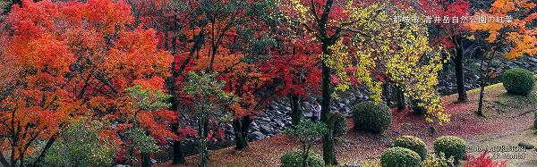 都城市 山之口町 青井岳温泉の紅葉